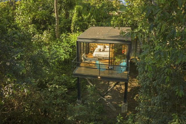 Rondreis Colombia Quindio/Armenia/Bio Habitat jungleroom
