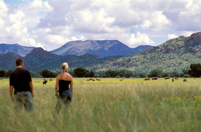 rondreis hoogtepunten van Namibië - AmbianceTravel