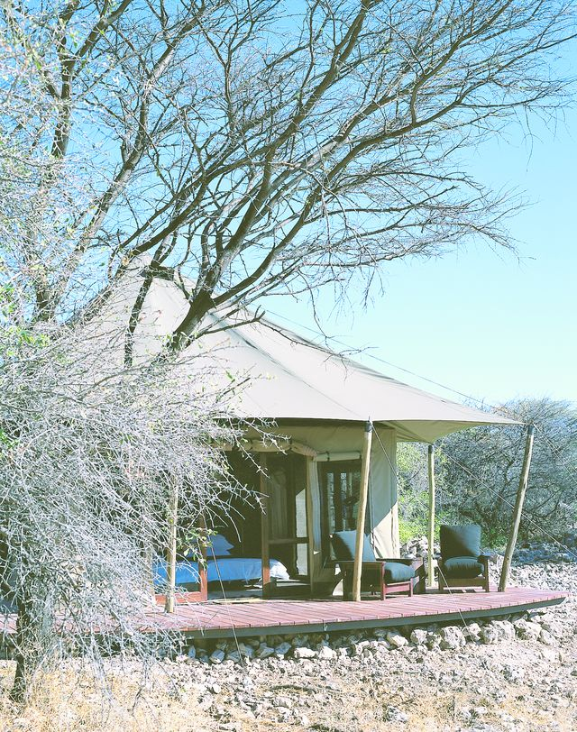 Rondreis Namibie Onguma Tented lodge tent
