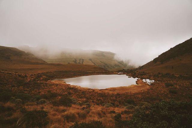 Rondreis Colombia Quindio Los Nevados National Park een meertje in de mist