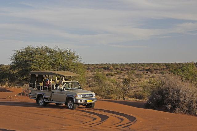 Rondreis Namibie Namib Naukluft safarei