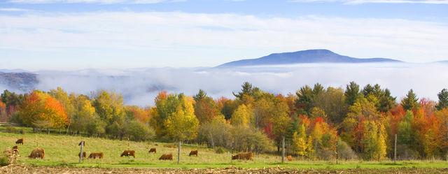 Stowe Vermont Panorama natuur