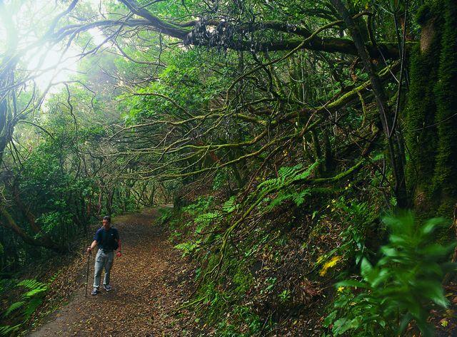 Rondreis Island hoppen Canarische Eilanden   AmbianceTravel