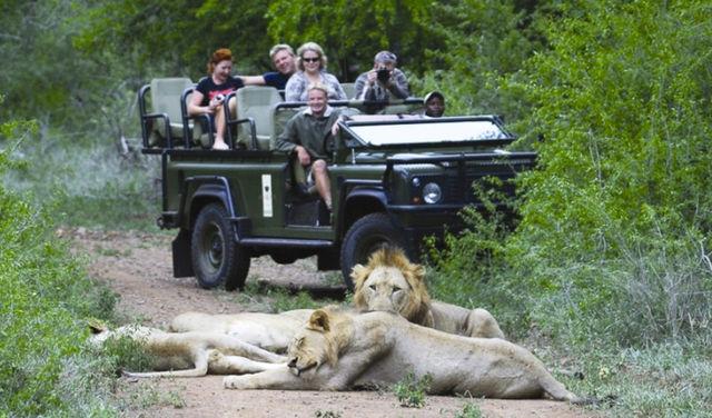 Rondreis Zuid-Afrika Amakoshi Game Reserve op safari