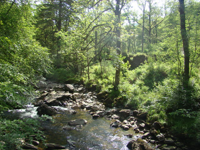 Natuur Cairndow Schotland