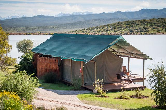 Zuid-Afrika Oudtshoorn Buffelsdrift safaritent