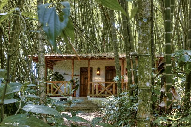 Rondreis Colombia Risaralda Filandia Bosques del Saman cabana in de jungle