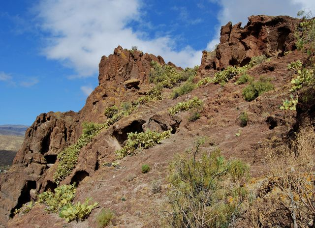 Bergen Canarische Eilanden La Palma