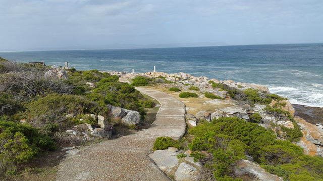 rondreis zuid-afrika Hermanus cliff path