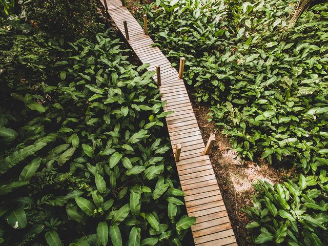 Rondreis Colombia Meta La Macarena Manigua Lodge, houten vlonders van het centrale gedeelte naar de kamer