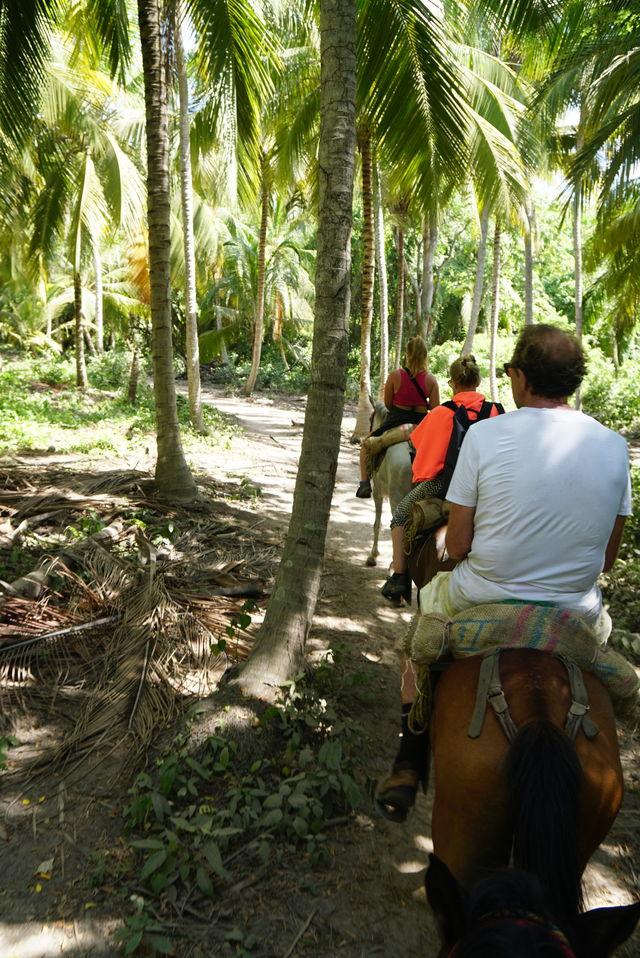 Individuele rondreis Colombia met oog voor de natuur | AmbianceTravel