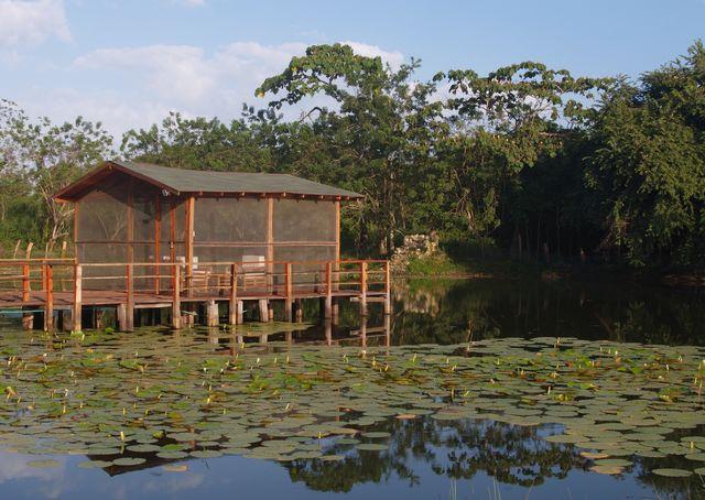 Rondreis Colombia Magdalena Palomino Beach Aite Eco Lodge de hut aan de kreek met kaaimannen