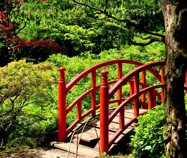 Landgoed Clingendael Japanse Tuin Den Haag Zuid-Holland Nederland
