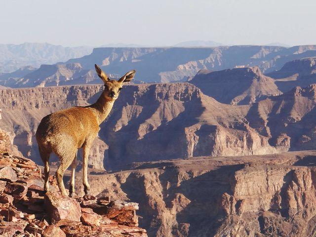 Rondreis Namibië Fish River Canyon