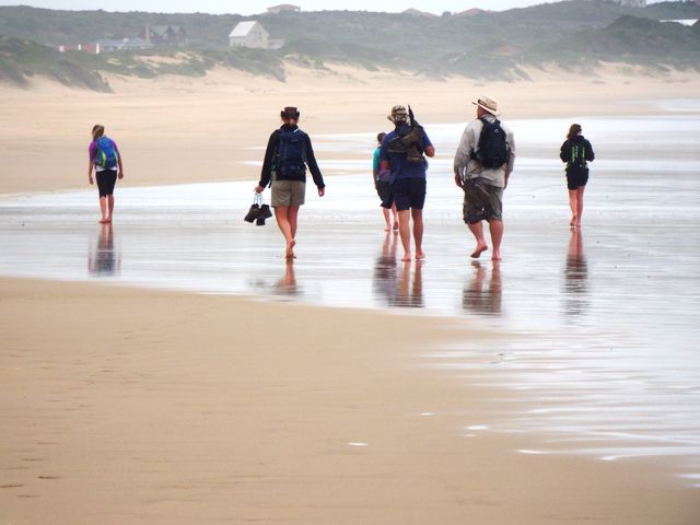 rondreis zuid-afrika Francis Bay strand