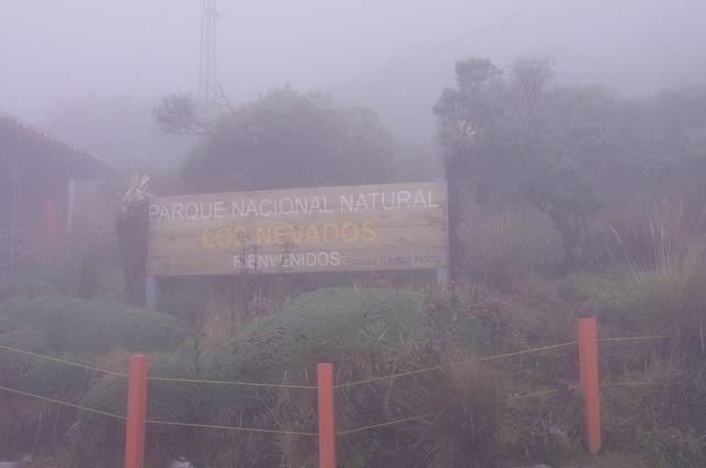 Rondreis Colombia Quindio Los Nevados National Park het park in de mist