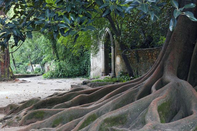 Quinta das Lágrimas Coimbra tuin