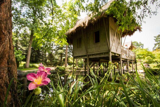 Kasteeltuinen Arcen Oosterse Tuin Venlo