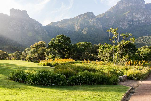 Rondreis Zuid-Afrika Kirstenbosch botanische tuinen
