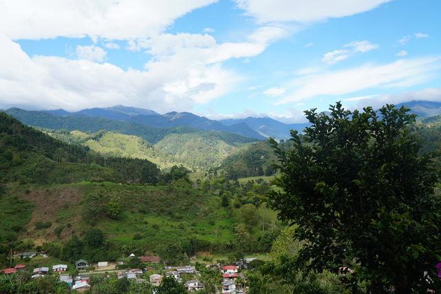 Rondreis Colombia Quindio Koffieregio landschap in de koffieregio
