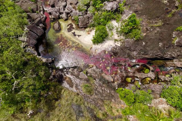 Rondreis Colombia Meta La Macarena Cano Cristales luchtfoto