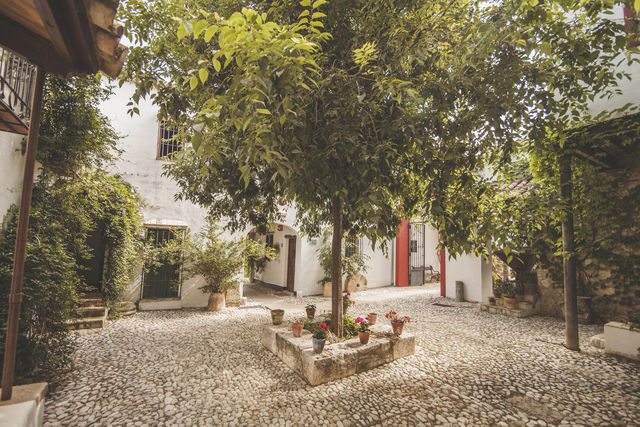 Hacienda Minerva Zuheros boom