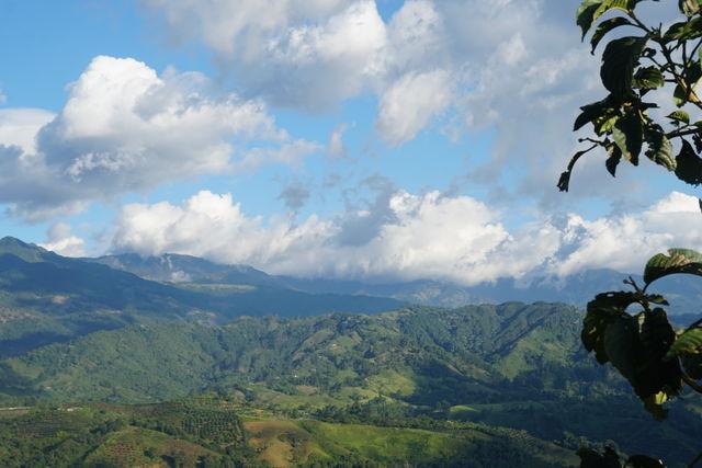 Rondreis Colombia Quindio Koffieregio uitzicht in de omgeving van Salento