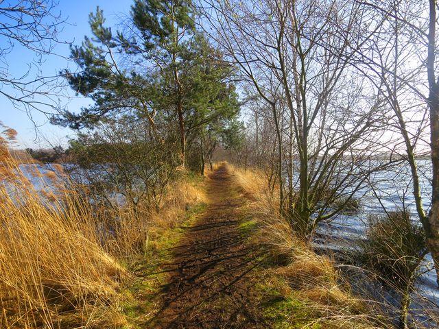De Groote Peel Noord-Limburg Nederland