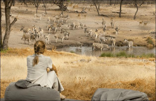 Rondreis Namibie Onguma Game Reserve zebra's spotten