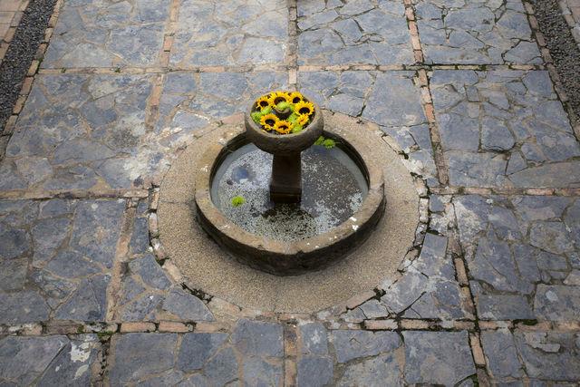 Rondreis Colombia Ricaurte Villa de Leyva Getsemani bloemetjes in een fontein