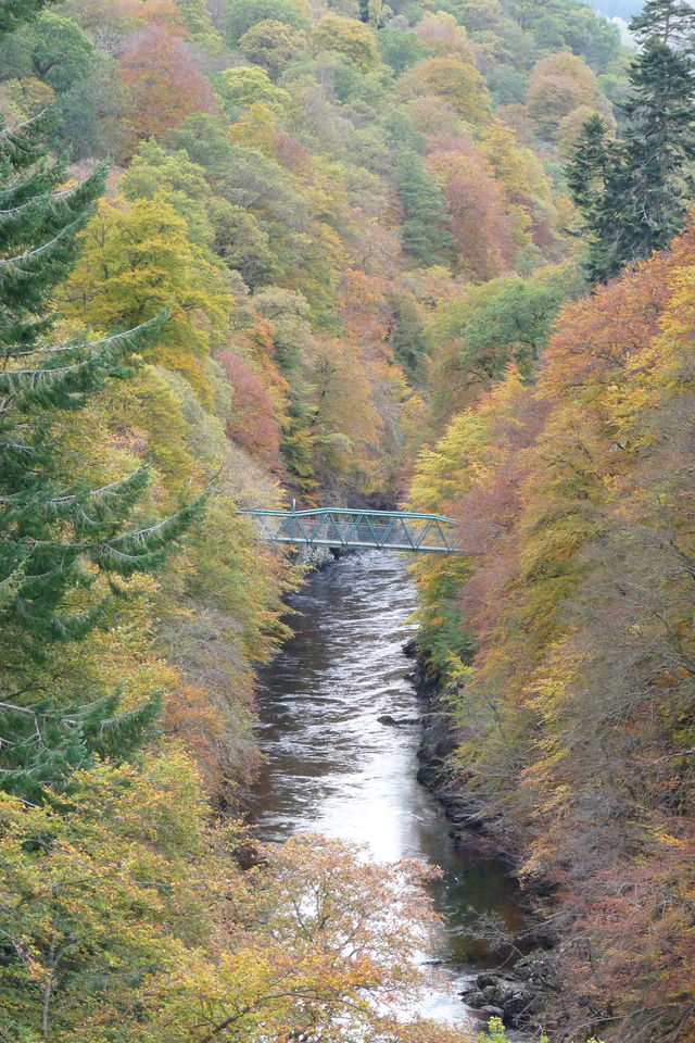 Rivier bos Pitlochry Schotland
