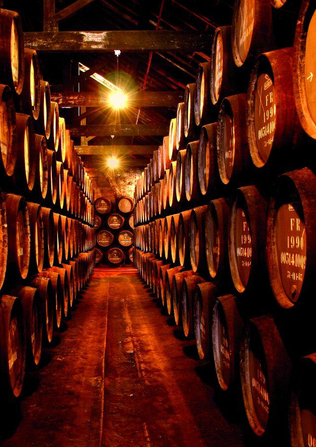 Wijn Kelder Noord-Portugal