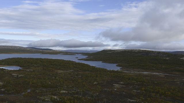 Landschap Røros Trøndelag Noorwegen