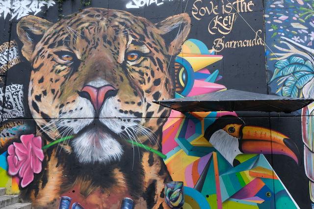 Rondreis Colombia Medellin Streetart met een leeuw