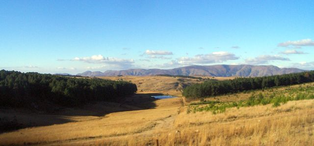 rondreis zuid-afrika Swaziland velden