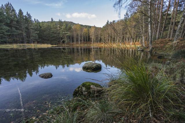 Breamar natuur Schotland