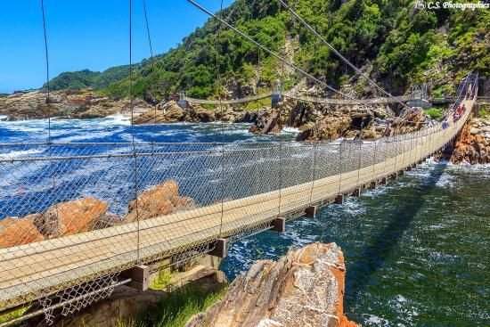 Rondreis Zuid-Afrika Tuinroute Storms River hangbrug