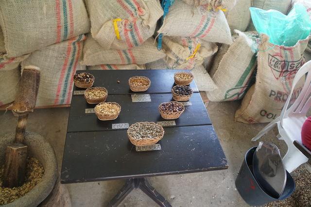 Rondreis Colombia Quindio Koffieregio voorbeelden van verschillende soorten koffie