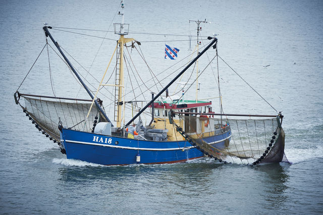 Vissersboot Terschelling