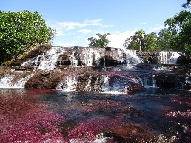 Rondreis Colombia Meta La Macarena Cano Cristales waterval met rode kleur