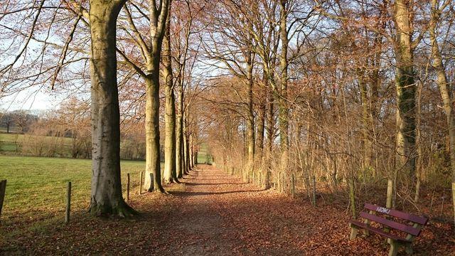 Natuur Zuid-Limburg Nederland
