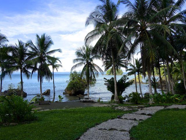 Rondreis Colombia Choco Nuqui El Cantil Ecolodge palmen langs strand