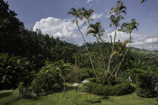 Rondreis Colombia Quindio Manizales Hacienda Venecia de tuin van het hotel