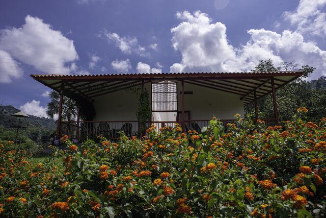 Rondreis Colombia Quindio Manizales Hacienda Venecia in bloeiende omgeving