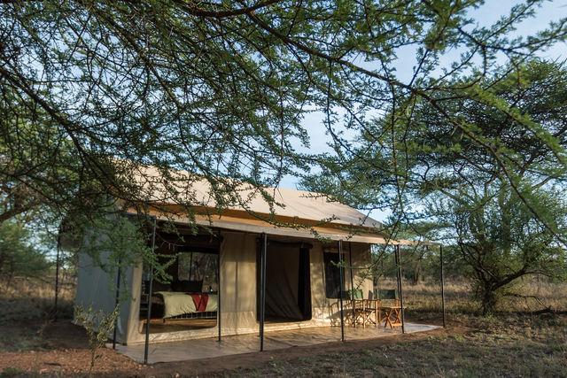 Rondreis Tanzania Serengeti double