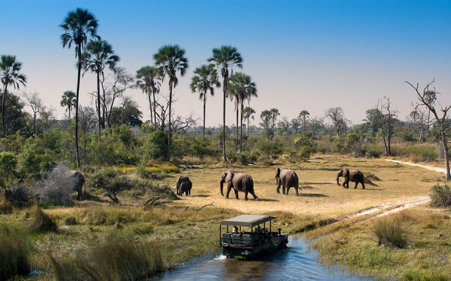 Riondreis Botswana en Zimbabwe