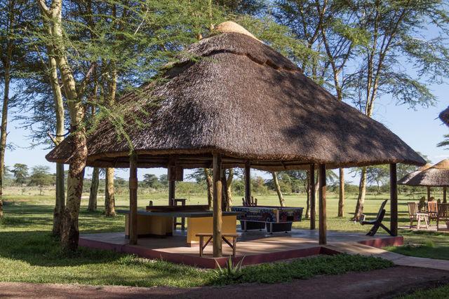 Rondreis Tanzania Lake Manyara