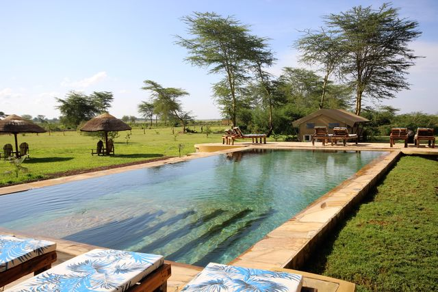 Rondreis Tanzania Lake Manyara zwembad