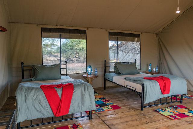Rondreis Tanzania Serengeti twin
