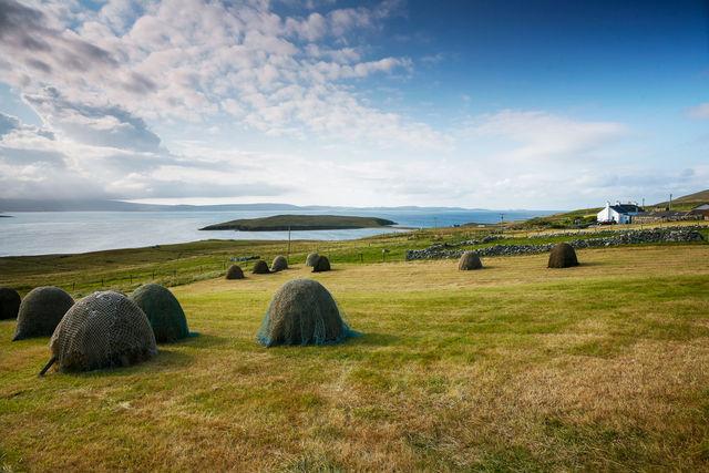 Rondreis Shetland- en Orkney-eilanden en NC 500 route | AmbianceTravel